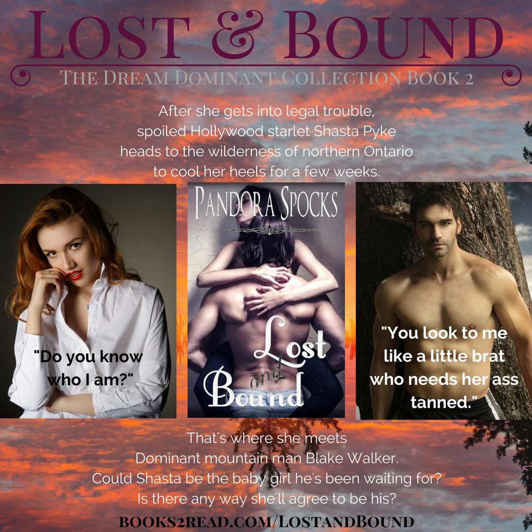 Lost & Bound NEW COVER