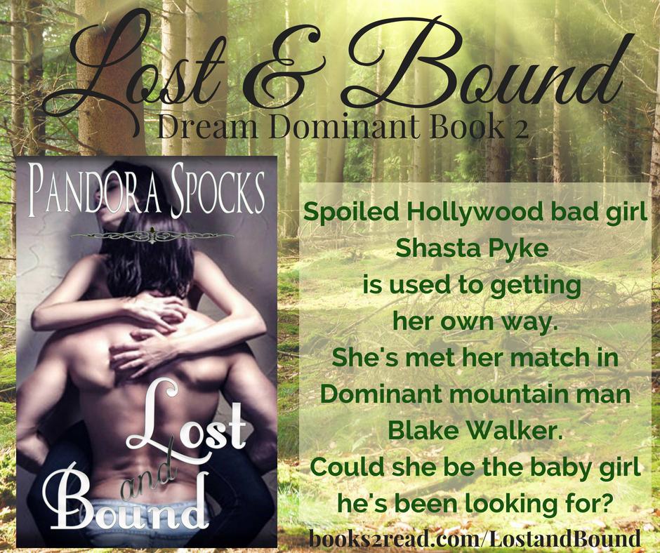 Lost & Bound promo new1
